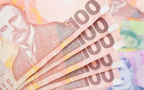 Small Loans NZ