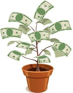 Watch your money grow